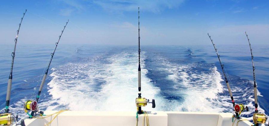 pesca-al-curricán